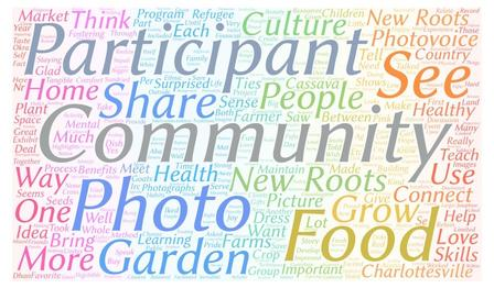 """word cloud with """"participant"""", """"community"""", """"see"""", """"photo"""", """"food"""" and """"garden"""" being the largest words"""