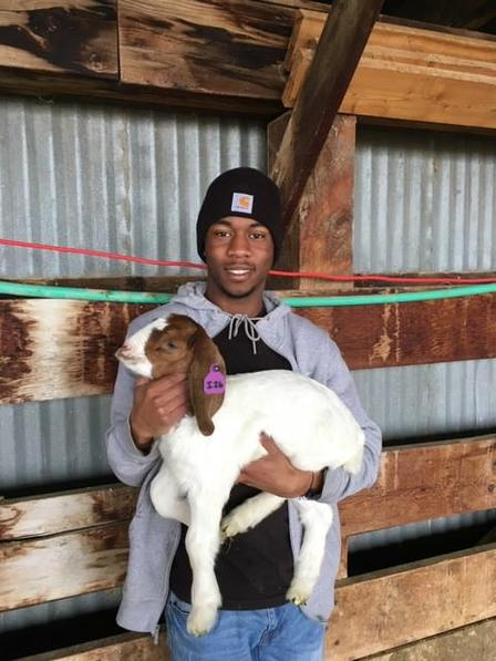 Refugee youth holds goat kid at the East African Refugee Goat Project, a project of the International Rescue Committee in Salt Lake City.