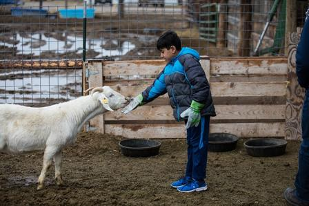 The International Rescue Committee (IRC) in Salt Lake City is part of the East African Refugee Goat Project.