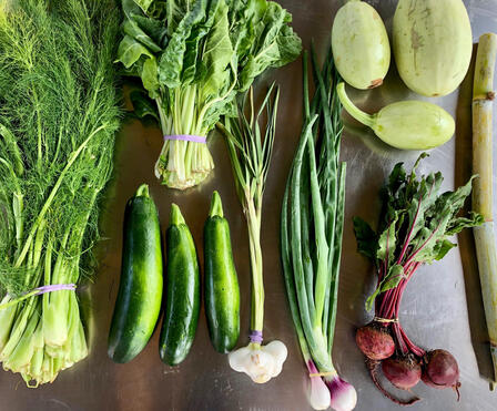 Produce selection for a box, including dill, greens, melons, beets, zucchini, green onions, and sugar cane.