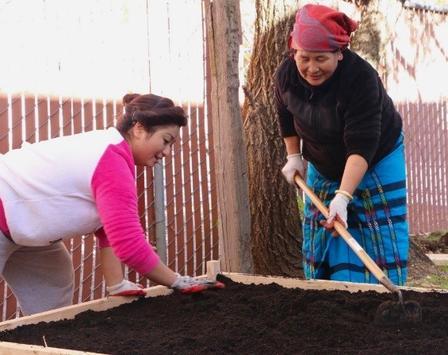 Program spotlight on New Roots in Sacramento