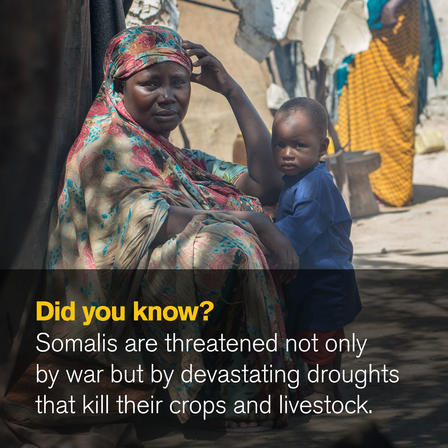 Did you know? Somalis are threatened not only by war but by devastating droughts that kill their crops and livestock.