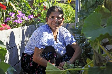 Refugee woman sits in New Roots community garden plot