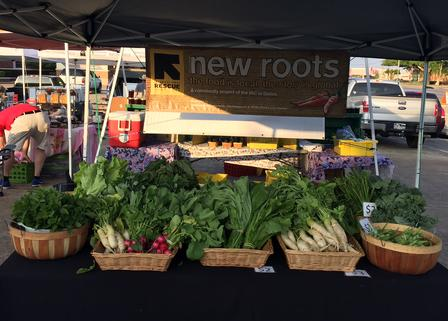 New Roots stall at Good Local Market