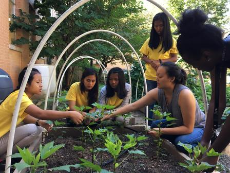 New Roots program staff work with students in the Clarkston High School garden.