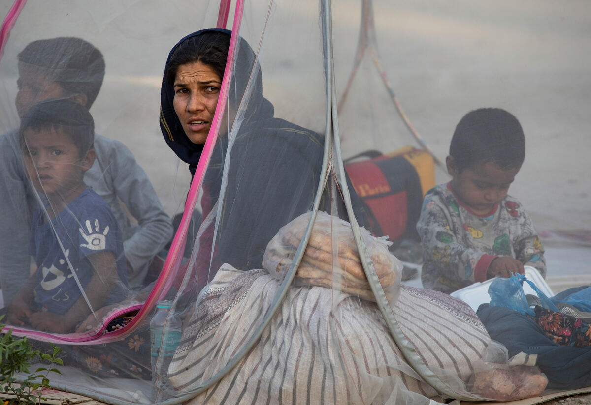 A displaced Afghan woman looking at the camera sits in a net tent with her young children around her.
