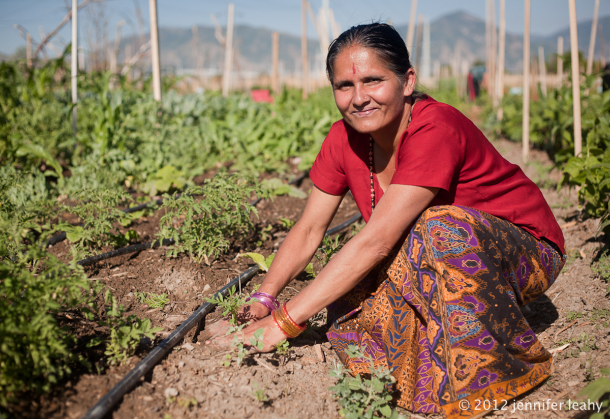 Refugee woman works on New Roots Farm