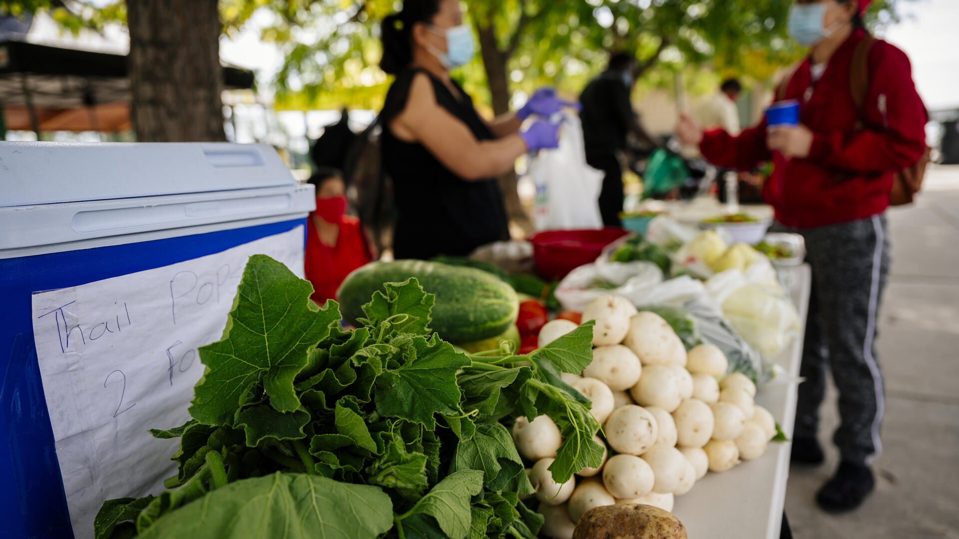 Two people communicate over a table full of produce.